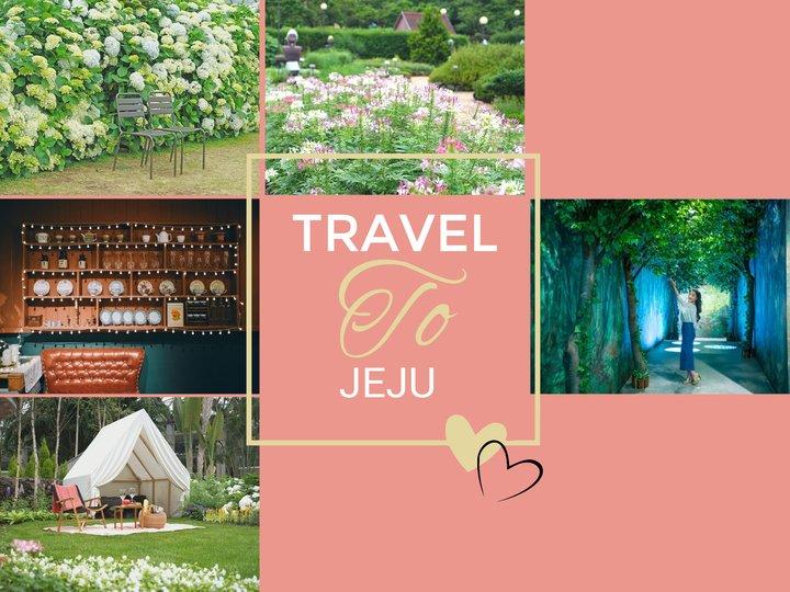 濟州島愜意自然之旅|夢幻森林|繡球花季|如美地植物園